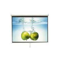 Wall Mounted Projection Screen
