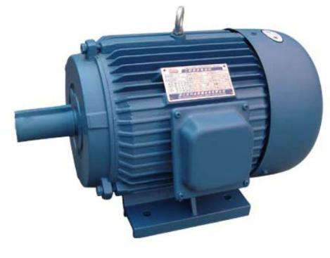 Electrical Motors Pumps Single Phase Heavy Duty