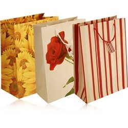 Exclusive Printed Paper Bags